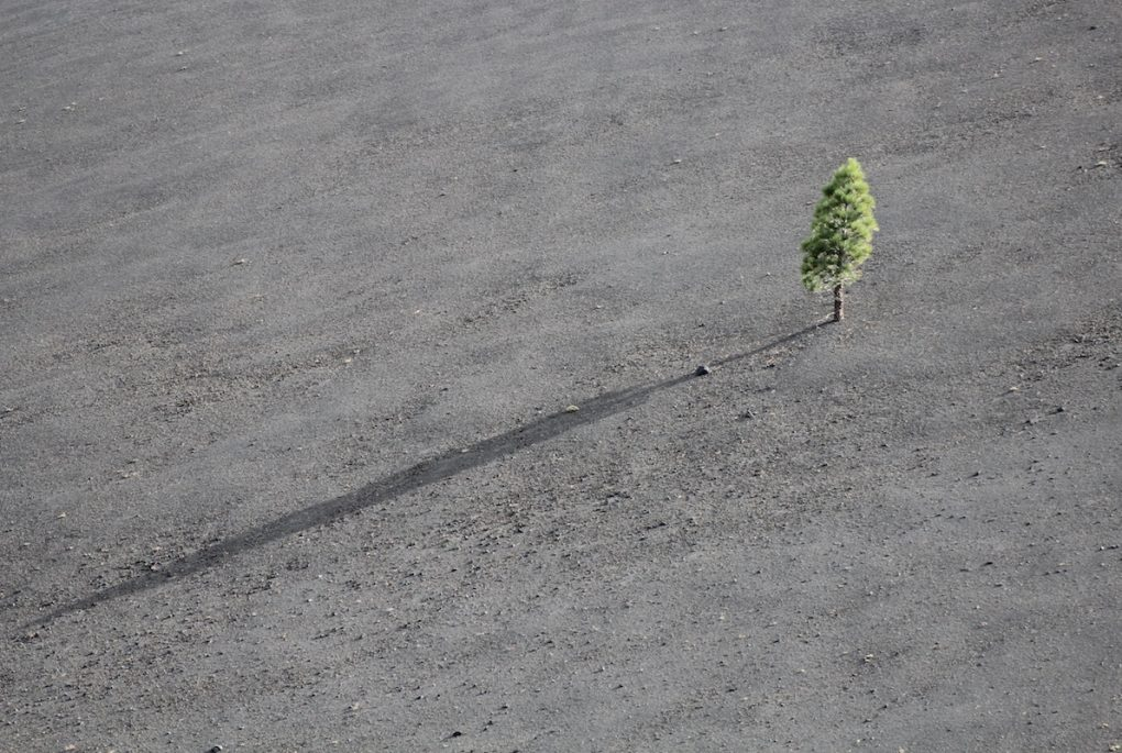 alleen-eenzaam-Lucas Meyers Unsplash
